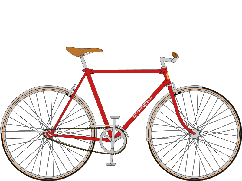 EXPRESS 50's SingleSpeed (fully protected)